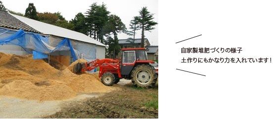 自家製堆肥づくりの様子 土作りにもかなり力を入れています!